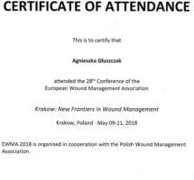 Kraków 9-11 maj 2018